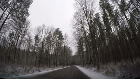 Fast driving through forest road stock video footage