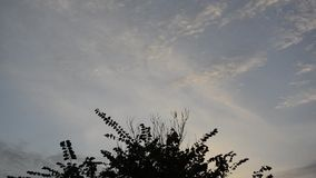 Fast Evening Clouds stock video footage