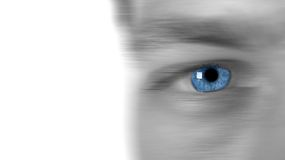 Fast Eye. Image showing sharp blue eye with softened skin to allow for copy space. Short DOF stock image