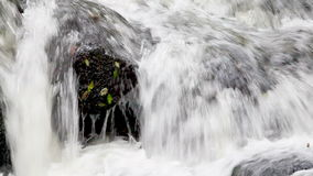 Fast flödande vatten lager videofilmer
