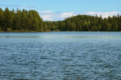 Fast flow on the river north. Summer river, Russia, Karelia neighborhood near the city of Belomorsk Stock Photography