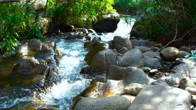 Fast flow transparent water in rocky river in tropical forest close up. Rapid water stream in mountain river. Fast flow transparent water in rocky river in stock footage