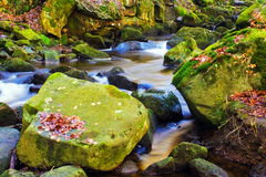 Fast flowing brook Royalty Free Stock Photo