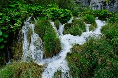 Fast Flowing Rapid, Plitvice Lakes, Croatia Royalty Free Stock Images