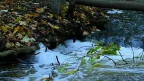 Fast flowing river after heavy rainfall stock footage