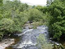Fast-flowing River with Trees. Fast flowing river shown, with strong currents creating white water. In the bottom left corner, the rocky bank is visible under stock image