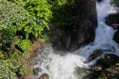 Fast flowing stream in tropical biome royalty free stock photos