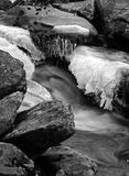 Fast Flowing stream in winter Royalty Free Stock Image