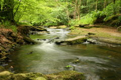 Fast flowing water. Down a  stream Stock Images