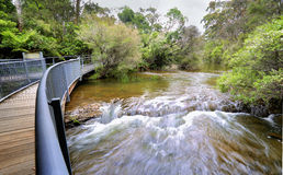 Fast flowing water at the approach to Fitzroy Falls Australia Stock Photos