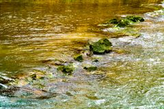 Fast flowing water in a creek with brown rocks and sunlight. Fast flowing water in a creek with brown rocks and sunlight Royalty Free Stock Photo