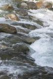 Fast Flowing water - Lynn Canyon, North Vancouver Stock Photo