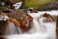 Fast flowing water in the mountain Stock Images