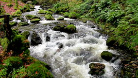 Fast flowing water. Fast flowing spring water over rock stock video footage