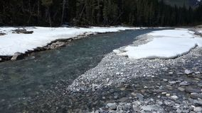 Fast-flowing water in the springtime at banff national park Stock Photos