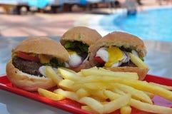 Fast food Fotografia de Stock Royalty Free