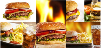 Free Fast Food Royalty Free Stock Photo - 9804225