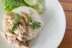 Fast Food Chicken rice steam of Thailand. Stock Image