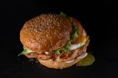 Fast food em um fundo preto imagem de stock