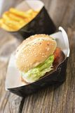 Fast food hamburger and french fries. Royalty Free Stock Image
