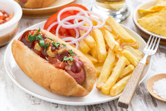 Fast food - hot dog with French fries and chips, close-up Royalty Free Stock Photos
