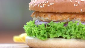 Fast food macro. Chicken burger with fresh vegetables stock footage