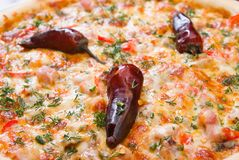 Fast food Pizza. Stock Images