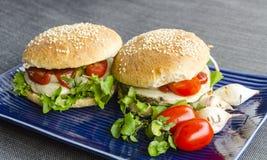 Fast food saudável do vegetariano Fotografia de Stock Royalty Free