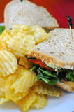 Fast Food Set Meal Royalty Free Stock Photography