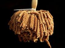 Corn Dogs on Sticks Royalty Free Stock Photography