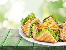 Grilled halves of sandwiches and french fries. Fast food table background meat food wooden tasty stock image