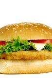 fast foody Fotografia Royalty Free