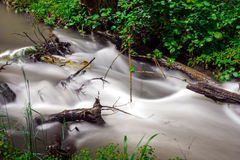 Fast forest river. Small river in wood. Fast water stream in forest Stock Photo