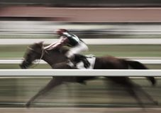 Fast forward. Panning image of a jockey riding a horse with motion blur Stock Photos