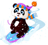 Fast fun Panda. Cute panda sledding downhill winter snow mountain Stock Images