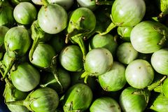 Thai eggplant on market. royalty free stock image