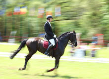 Fast horse riding Royalty Free Stock Photo