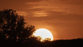 Sunset over mountain and tree timelapse. Fast huge sun sunset behind mountain and tree stock video
