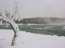 Fast icy river in Niagara Falls park Stock Photo