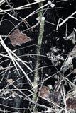 Fast jordning för frysning till blått och frostat gräs arkivfoton