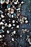 Fast jordning för frysning till blått och frostat gräs arkivbild