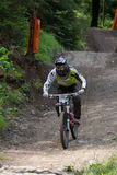 Fast mountain biker in the forest Royalty Free Stock Photography