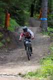 Fast mountain biker racing from ther hill Stock Images
