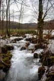 Fast mountain creek flowing Stock Photo