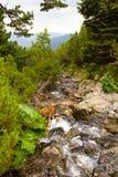 Fast mountain river. High altitude mountain river in the Carpathians, towards the Iezer, the glacial lake. Iezer-Papusa Massive, Arges, Romania Stock Image