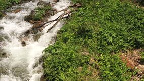 Fast mountain river actively overcoming rocky rapids. Top view stock footage