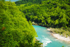 Fast mountain river Royalty Free Stock Images