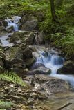 Fast mountain river flowing among mossy stones royalty free stock image