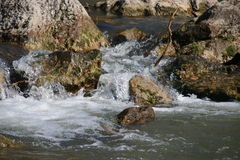 Fast mountain river, pure water Royalty Free Stock Photo