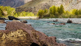 Fast Mountain River. Among the rocks stock video footage